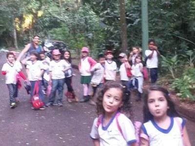 Passeio Bosque (2).jpg